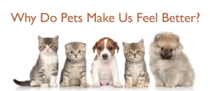 pets make us feel better